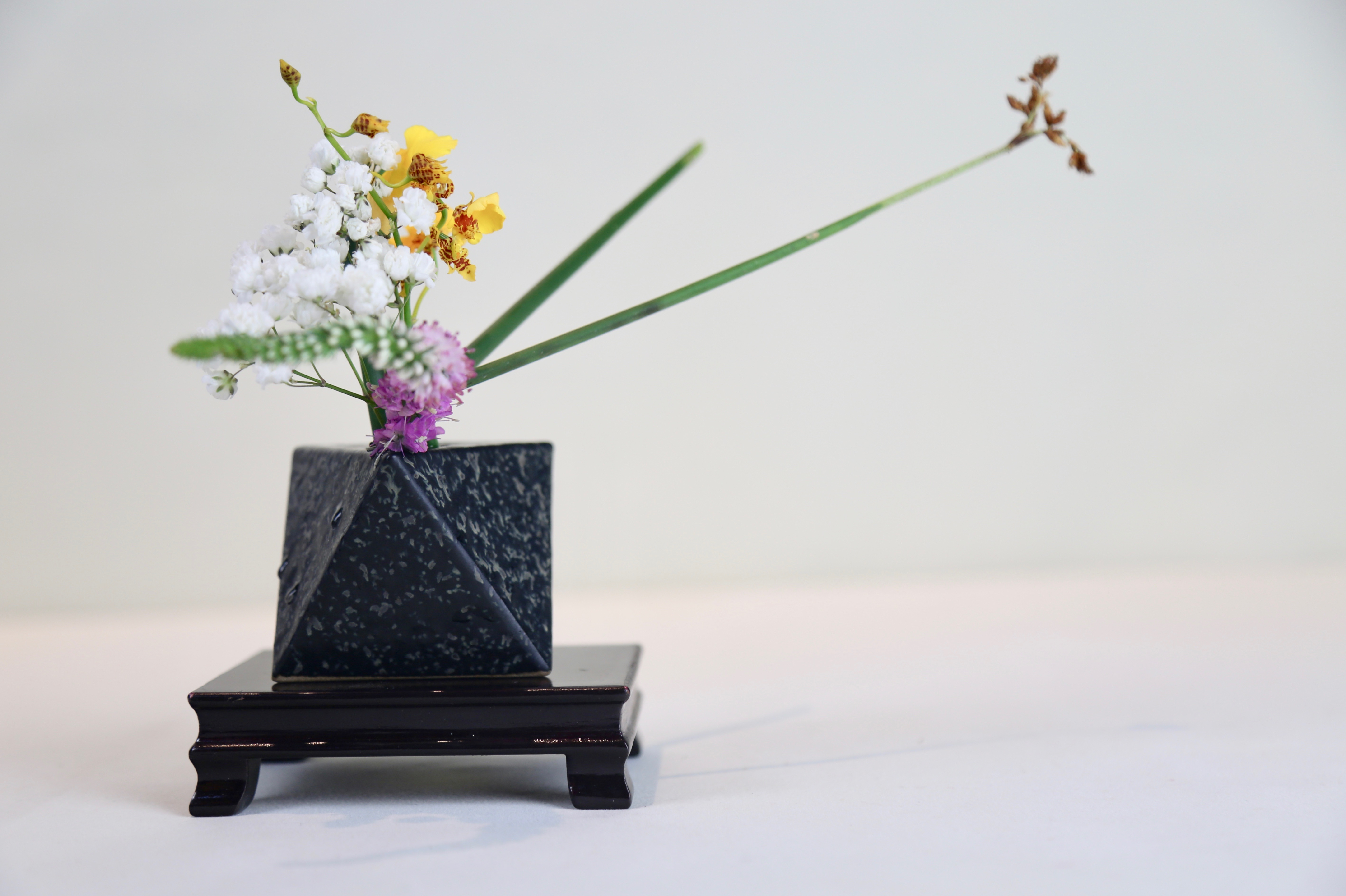 Naples Ikebana International #160 Show | Naples Botanical ...