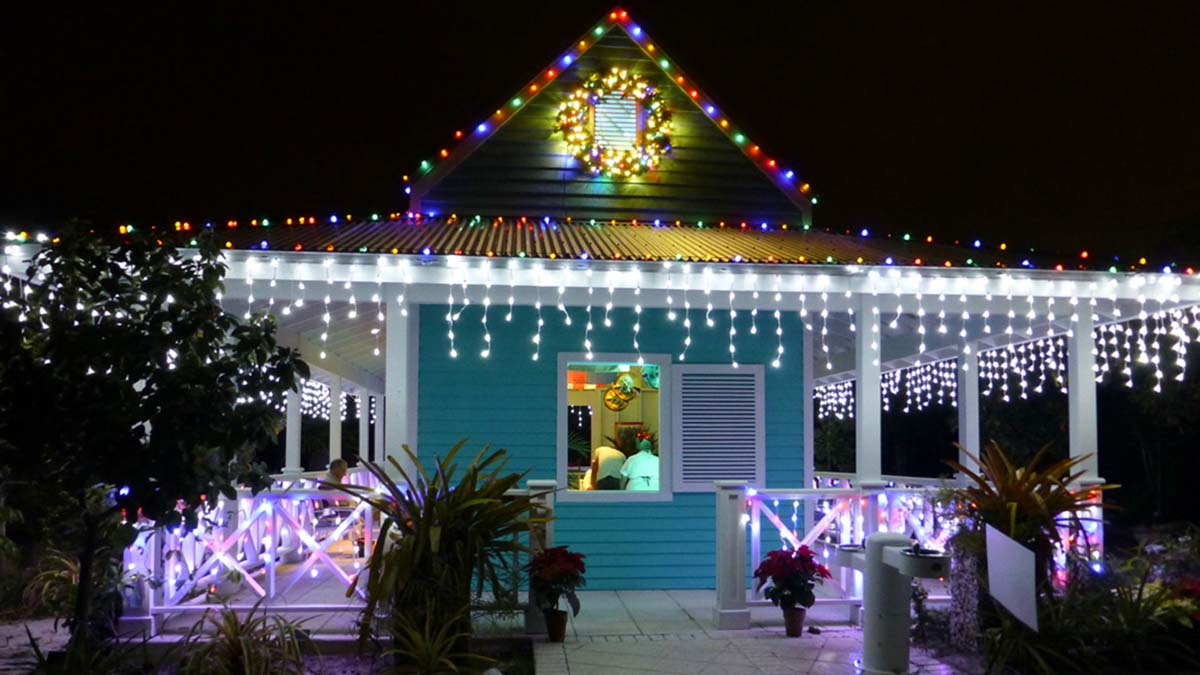 Christmas Night Light