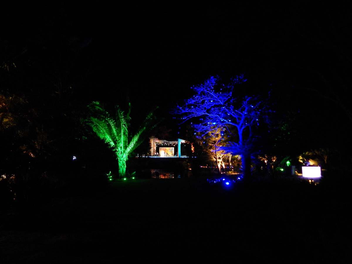 Night Lights in the Garden  Naples Botanical Garden