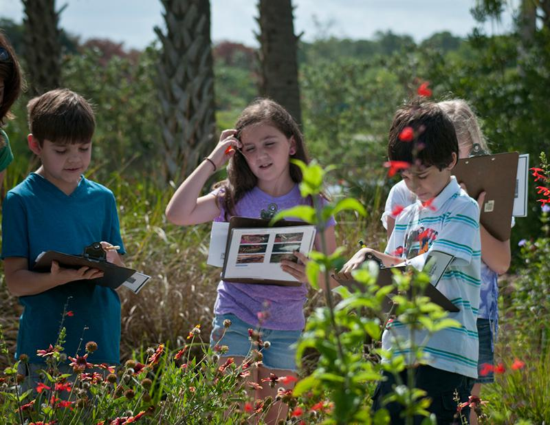 Field Trip Program Options  Naples Botanical Garden